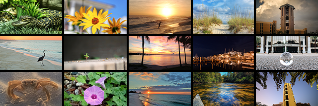 Congratulations, Fall 2015 Photo Contest Winners!