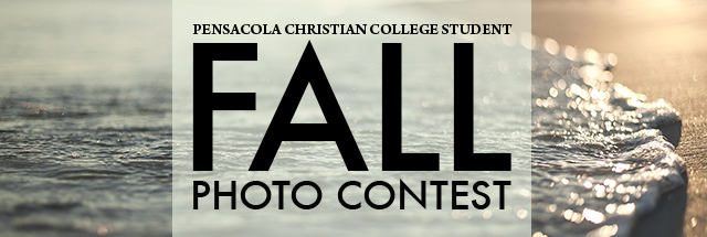 Congratulations, Fall 2016 Photo Contest Winners!