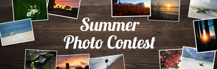 Congratulations, Summer 2017 Photo Contest Winners!