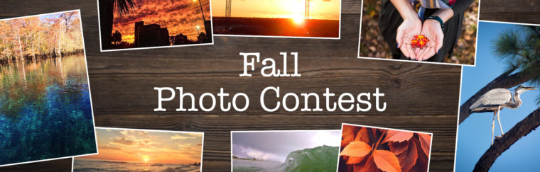 Congratulations, Fall 2017 Photo Contest Winners!